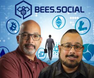 bees.social free crypto course